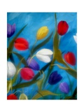 Tulips Galore III