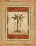 Palm Botanical Study I
