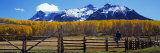 Last Dollar Ranch  Ridgeway  Colorado  USA
