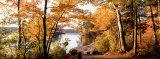 Sunset  Sacandaga Lake  Adirondack Mountains  New York State  USA