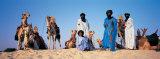 Tuareg Camel Riders  Mali  Africa