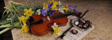 High Angle View of a Violin with Flowers