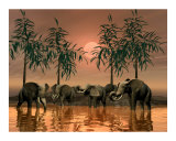 Jungle Scene of Elephants
