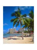 Kuhio Beach  Waikiki  Honolulu
