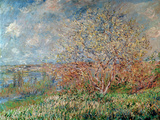 Spring  1880-82