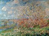 Spring  1880-82