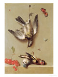 Still Life of Dead Birds and Cherries  1712