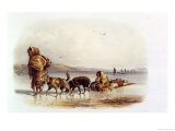 Dog Sledges of the Mandan Indians