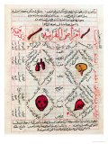 "Page from the ""Canon of Medicine"" by Avicenna"