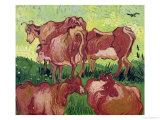 Cows  c1890