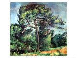 The Large Pine  circa 1889
