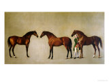 Whistlejacket and Two Other Stallions with Simon Cobb  the Groom  1762