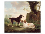 Two Spaniels in a Landscape