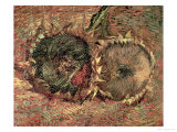 Two Cut Sunflowers  c1887