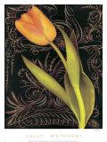 Tulip Manuscript II