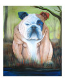 Bulldog in a Bog