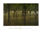Revitalize: Forest
