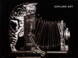 Explore Art