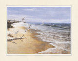 Deserted Beach with Seagulls