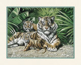Yellow Tigers with Cubs