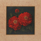 Red Carnation with Border II