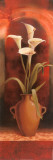 Potted White Calla Lily