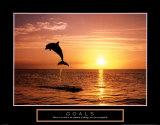 Goals: Dolphins Reproduction d'art par Craig Tuttle