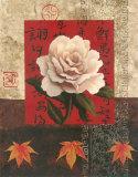 White Chinese Rose