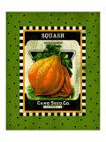Squash Seed Pack