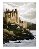 Adkins Castle