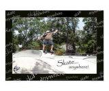 Skate anywhere! 10