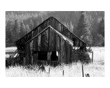Old Barn Near Sierraville Ca