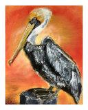 072806 Mr Brown Pelican