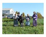 Amish Children