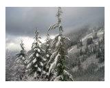 Cascade mountain tops