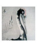 Red Crowned Japanese Crane