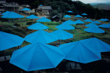 The Blue Umbrellas  c1984