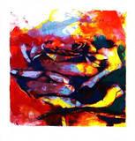 Rose Berlin  2002