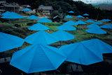 Umbrellas  1984-1991