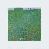 Poppy Field  1907