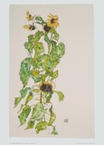 Sunflowers  1917