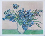 Vase of Irises  c1890