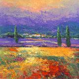 Provence II