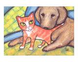 Tabby Kitten With Golden Retriever Dog
