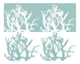 Seafoam Coral print