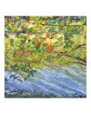 Lake through Autumn Leaves