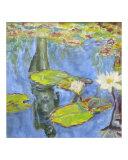 Garden Pond - Reflection
