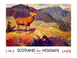 Scotland for Holidays
