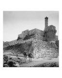 Tower of Zion  the Citadel  Jerusalem
