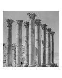 The Iconic Pillars of Artemis
